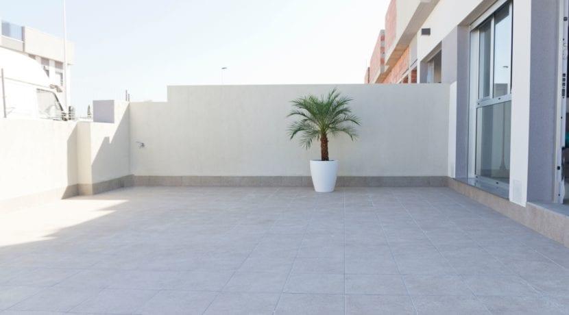 Pinada, Pilar de la Horadada (1)